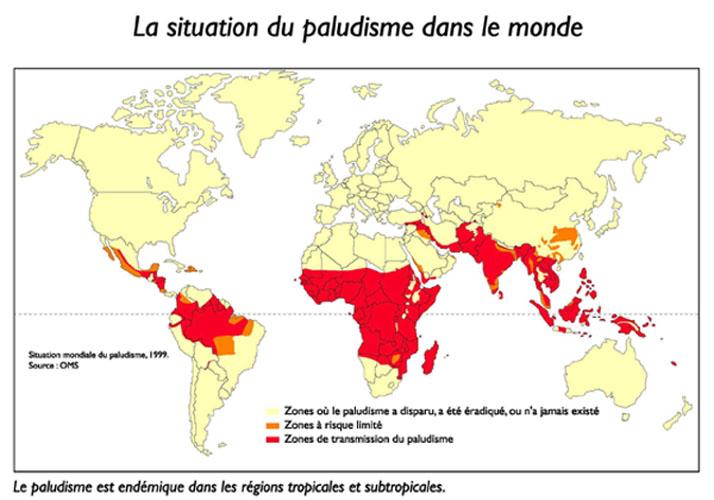 malária vo svete